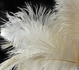 Ostrich Feathers White Drabs 1/2 lb. 14-17in