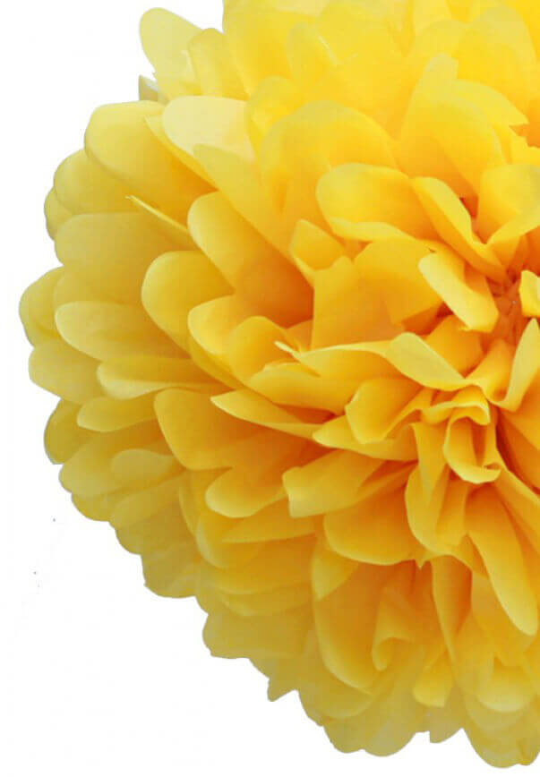 "4 - 20"" Yellow Tissue Paper Pom Poms"
