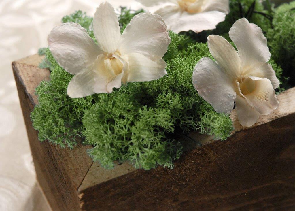 "Planter Boxes Rustic Barnwood 12"" x 4"""
