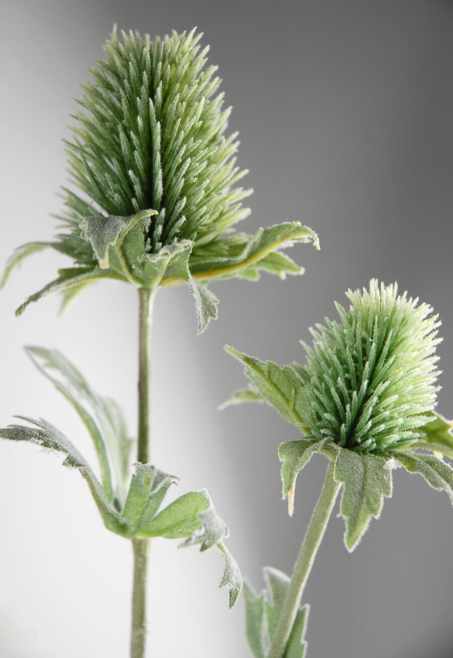 Green Thistles Artificial 31in