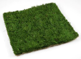 Preserved Grass Mat 12in