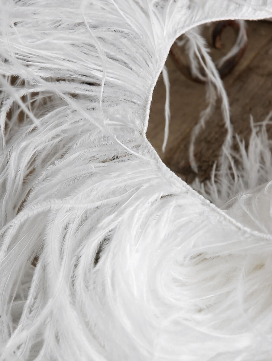 Ostrich Feathers Trim White (7