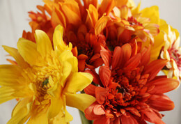 Vibrant Orange and Yellow Gerbera Daisy Bouquet 22in