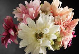 """22"""" Pink/Green Gerbera Daisy Bouquet"""