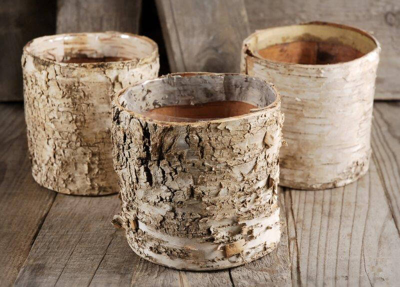 Birch Pots Vases Round 4.75in x 4.75in with Liners