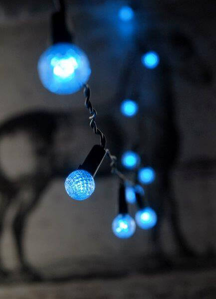 String Lights Blue : Blue LED String Lights Battery Operated