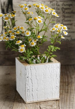 Rustic Wood Planter Box 4in White