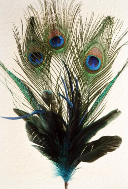 Peacock Feather Spray Blue 24in