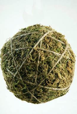 """12- 4"""" Moss Balls"""