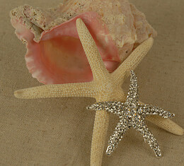 Bridal Brooch Jeweled Starfish