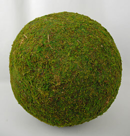 Preserved Natural Moss Ball 15in