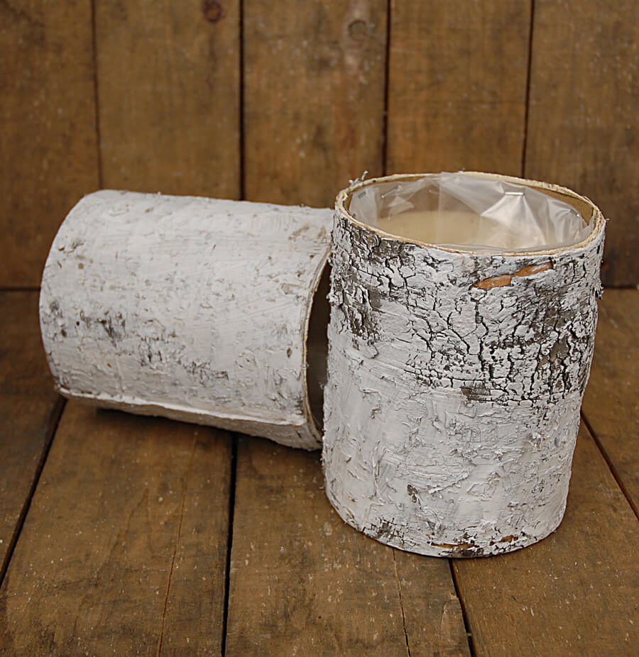 White Birch Bark Cylinder Vase 6in