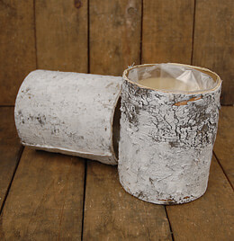 White Birch Bark Vase 6in