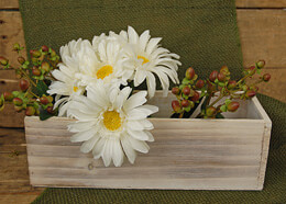 "Whitewashed Wood Planters 4"" x 4"" x 12"""