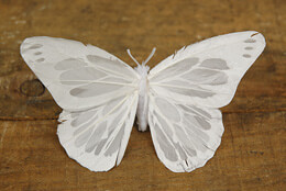 White Butterflies on Clips (Set of 3)