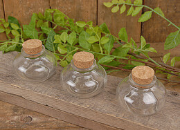 Tiny Glass Bottles with Corks | Pack of 24