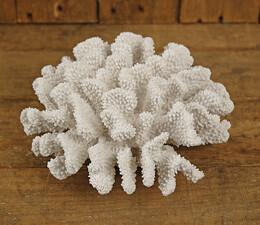 "Artificial Coral 4"" x 7"""