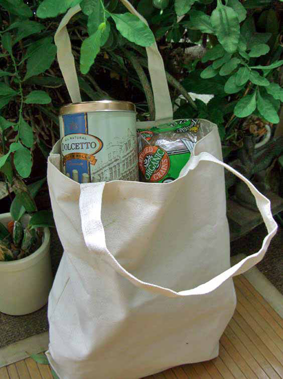 Canvas Tote Bag  Medium 14 x 16 x 4 Natural
