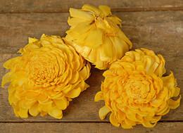 Sola Flowers Orange (12 flowers)