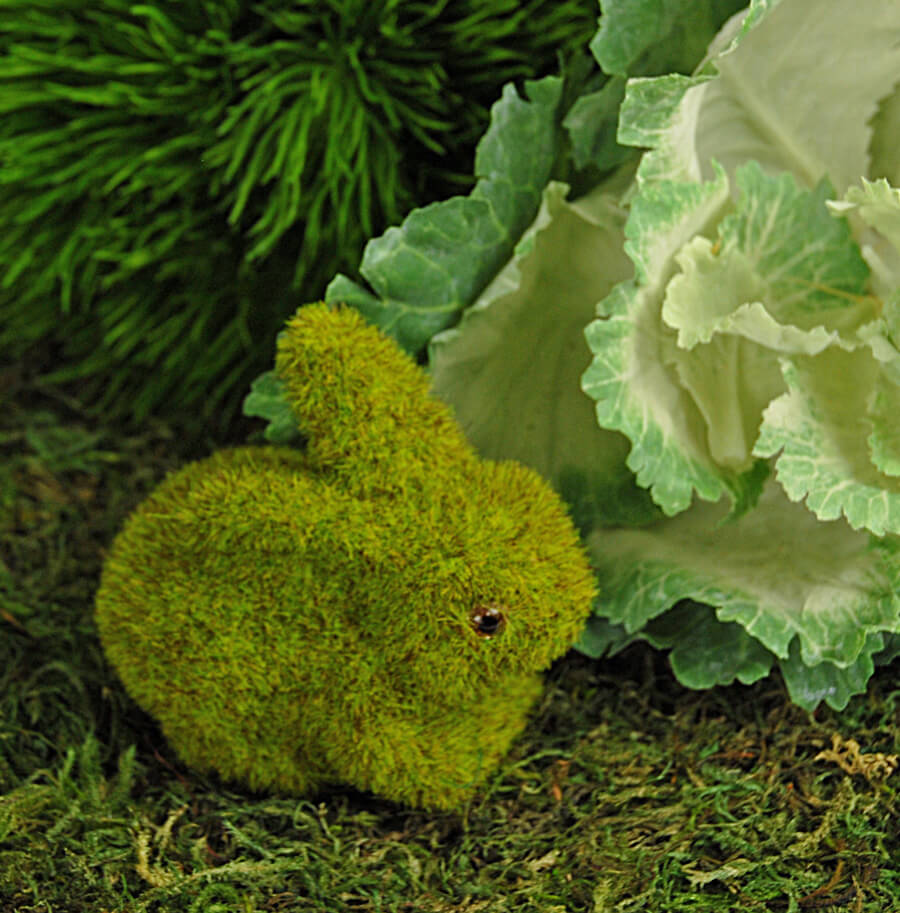 Moss Bunny Rabbit Sitting 3.5in