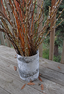 Birch Bark Vase 10 x 7in