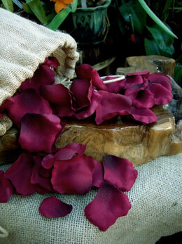 250 Burgundy Silk Rose Petals