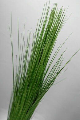 "36"" PVC Onion Grass Green"