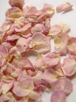 Preserved Rose Petals Pink|&nbsp5 Cups