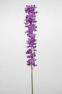 Orchid Stem Purple 53in