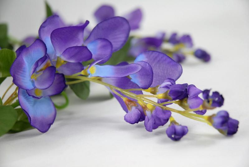 Wisteria Garlands Purple