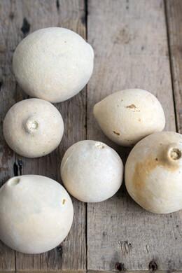 6 Bleached White Bellani Balls