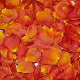 Orange & Yellow Rose Petals (5 cups)