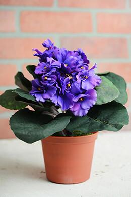 Violet Plant Artificial