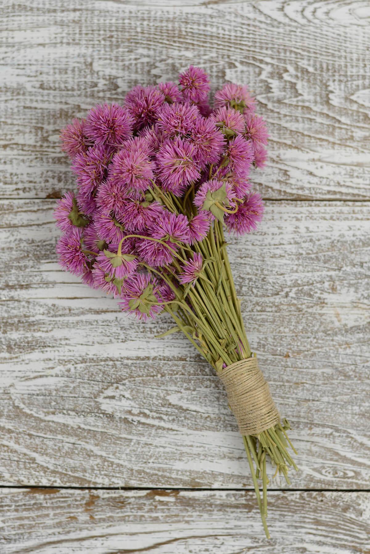 Pink Preserved Amaranth Bundle  4oz - 6-8in