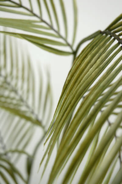 """Areca Palm Leaves 55"""" Artificial"""