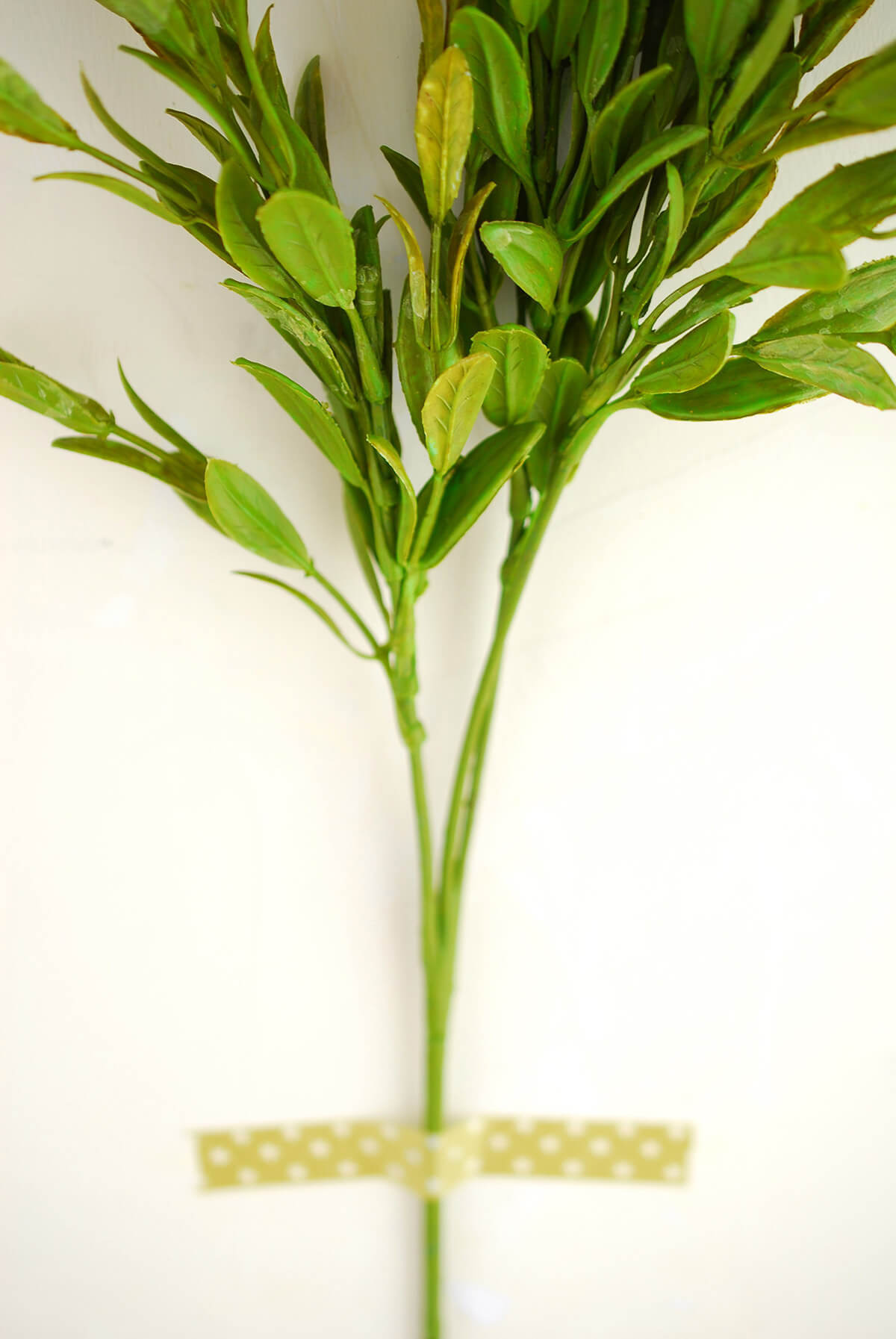 how to make natural tee tree plant spray