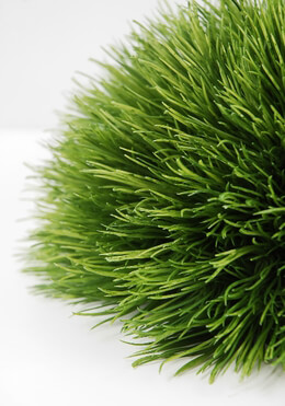 Artificial Grass Decoration 9in