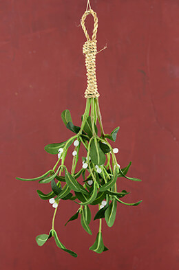 Artificial Mistletoe 15in