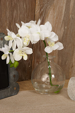 Artificial Orchids Cream 10in