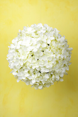 "9"" White Silk Hydrangea Balls, Hanging Decorations, Wedding Flowers"