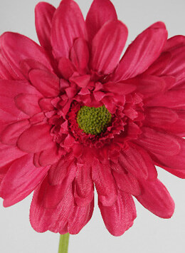 12 Beauty Red Gerbera Daisy Sprays