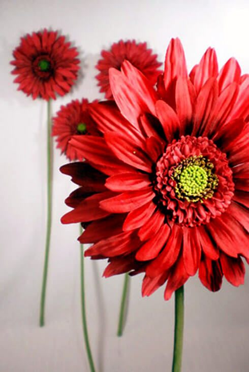 Red Silk Gerbera Daisy Flowers