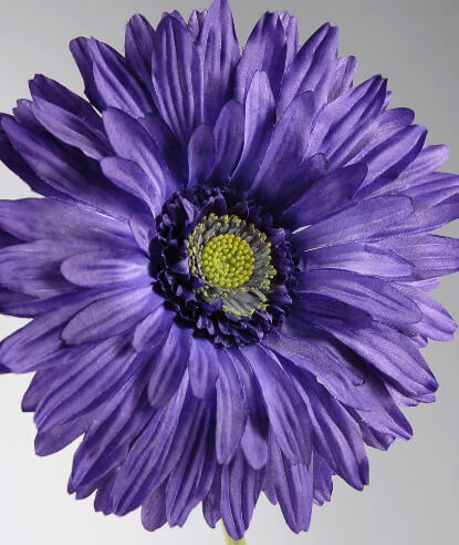 Purple Silk Gerbera Daisy Flowers