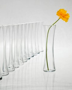Clear Glass Bud Vases (Pack of 8)