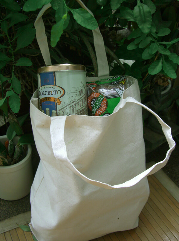 Cotton Grocery Bags (16 x 14)  Canvas