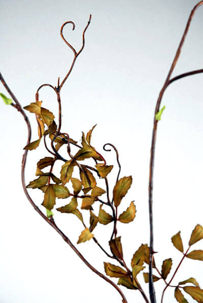 Curly Willow Branch Artificial 50in