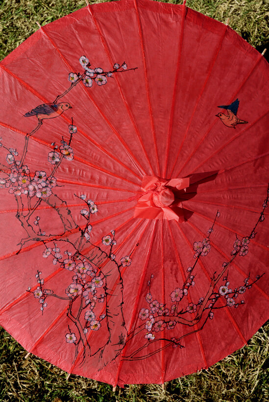 Parasol Red with Cherry Blossoms 32in