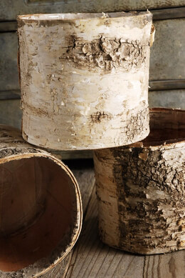Birch Bark Covered Pot w/Liner 6in