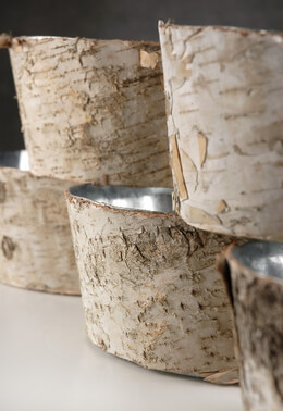 Natural Birch Bark Zinc Planter Pots 4x8