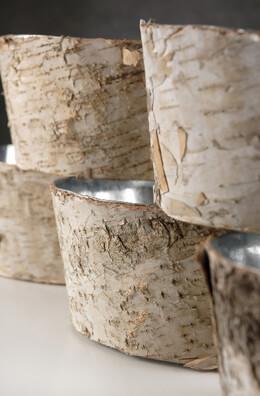 Natural Birch Bark Zinc Planter Pots 4x8